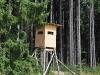 Lesnictví a myslivost
